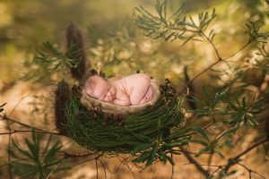 Albury wodonga newborn photography