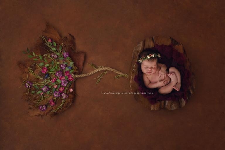 newborn umbilical tree life