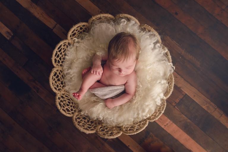 Albury baby photography
